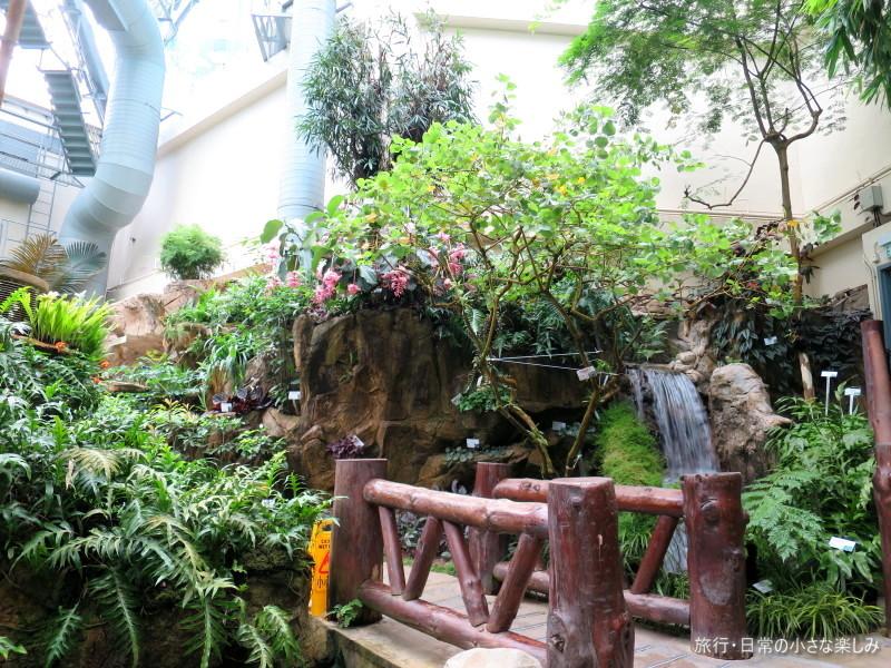 香港公園 植物園
