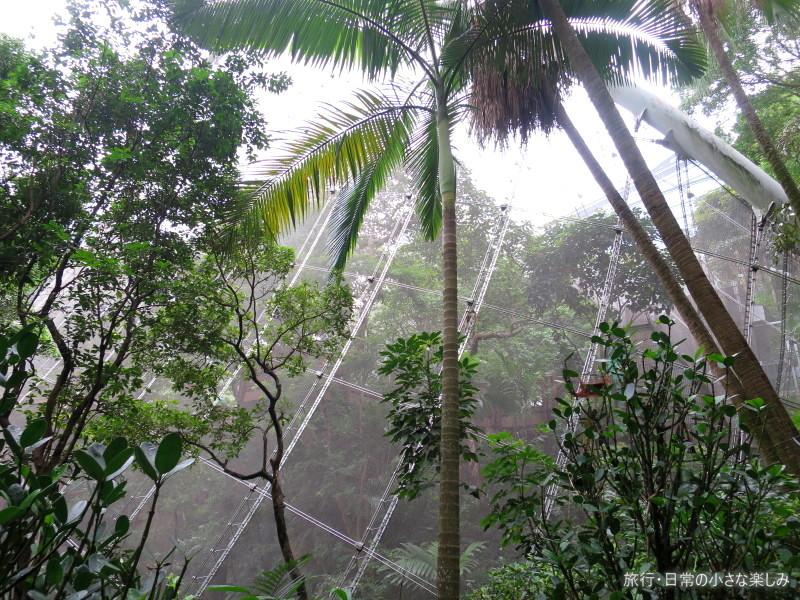 香港公園 野鳥園
