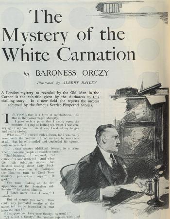 白いカーネーション1