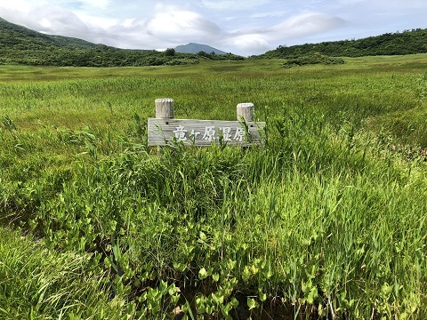 5竜ケ原湿原5
