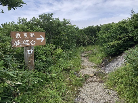 11散策路