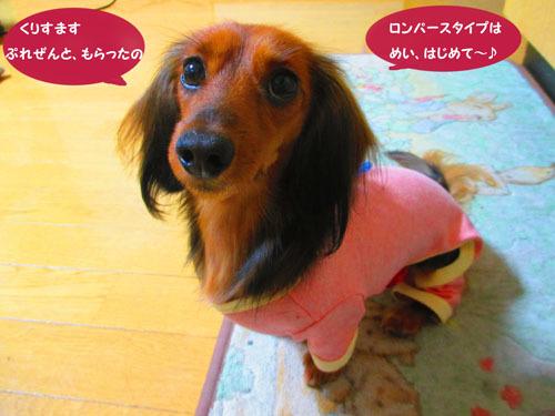 2015-12-c-mas4_20201225200358314.jpg