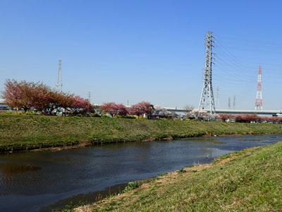 kawasakura24.jpg