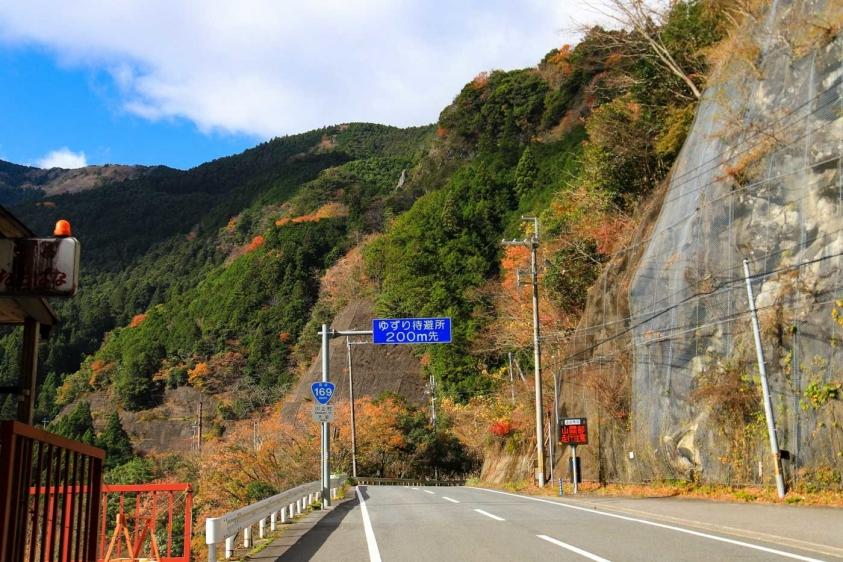 oodaigahara-17.jpg