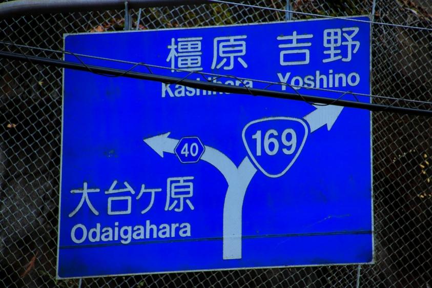 oodaigahara-20.jpg