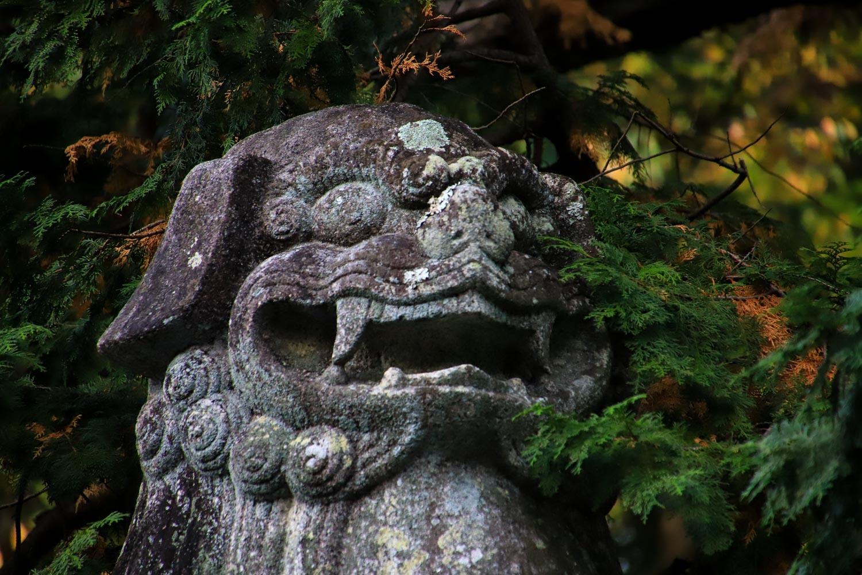 oodaigaharahalf-37.jpg