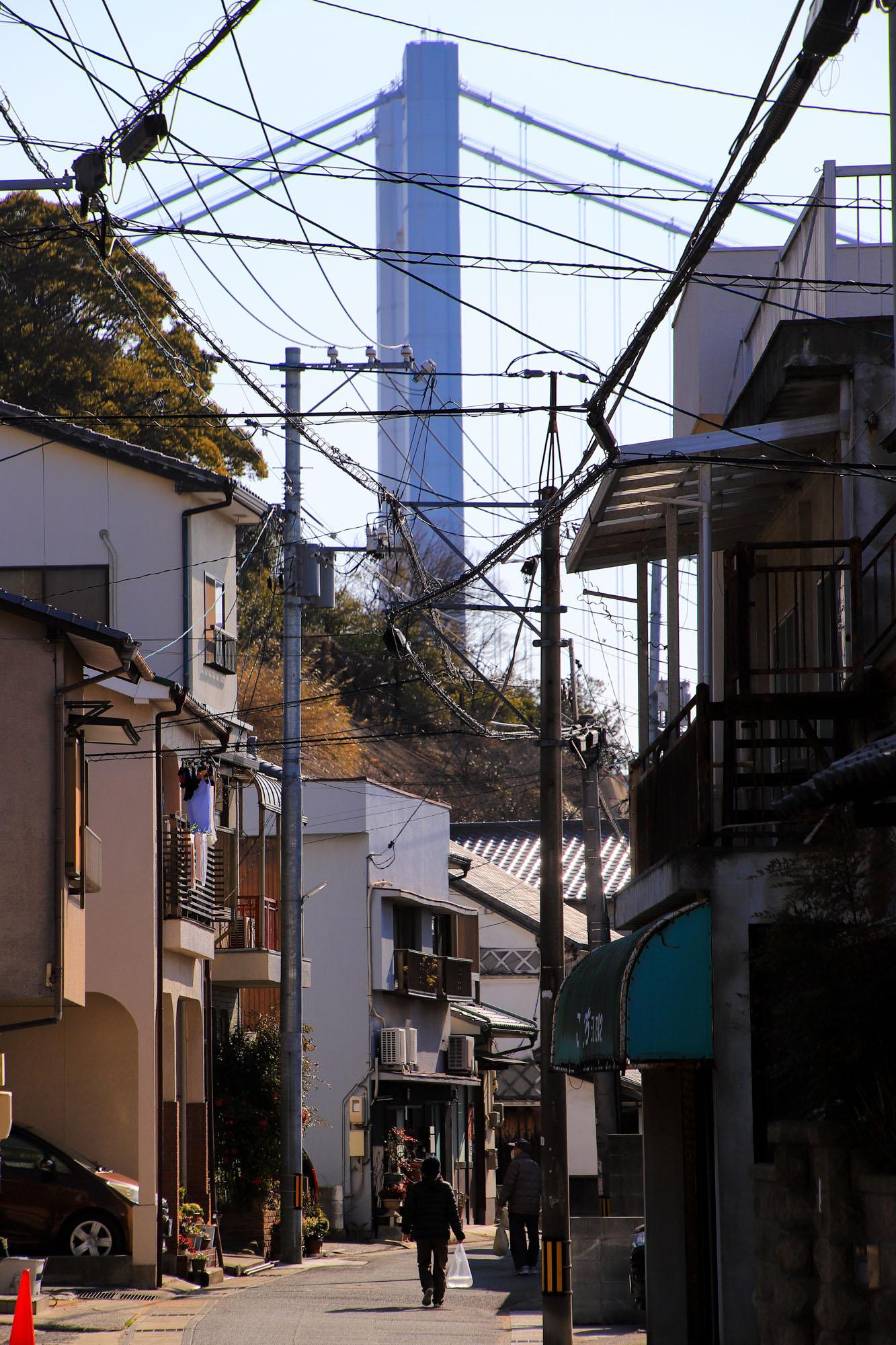 teshima1-12.jpg