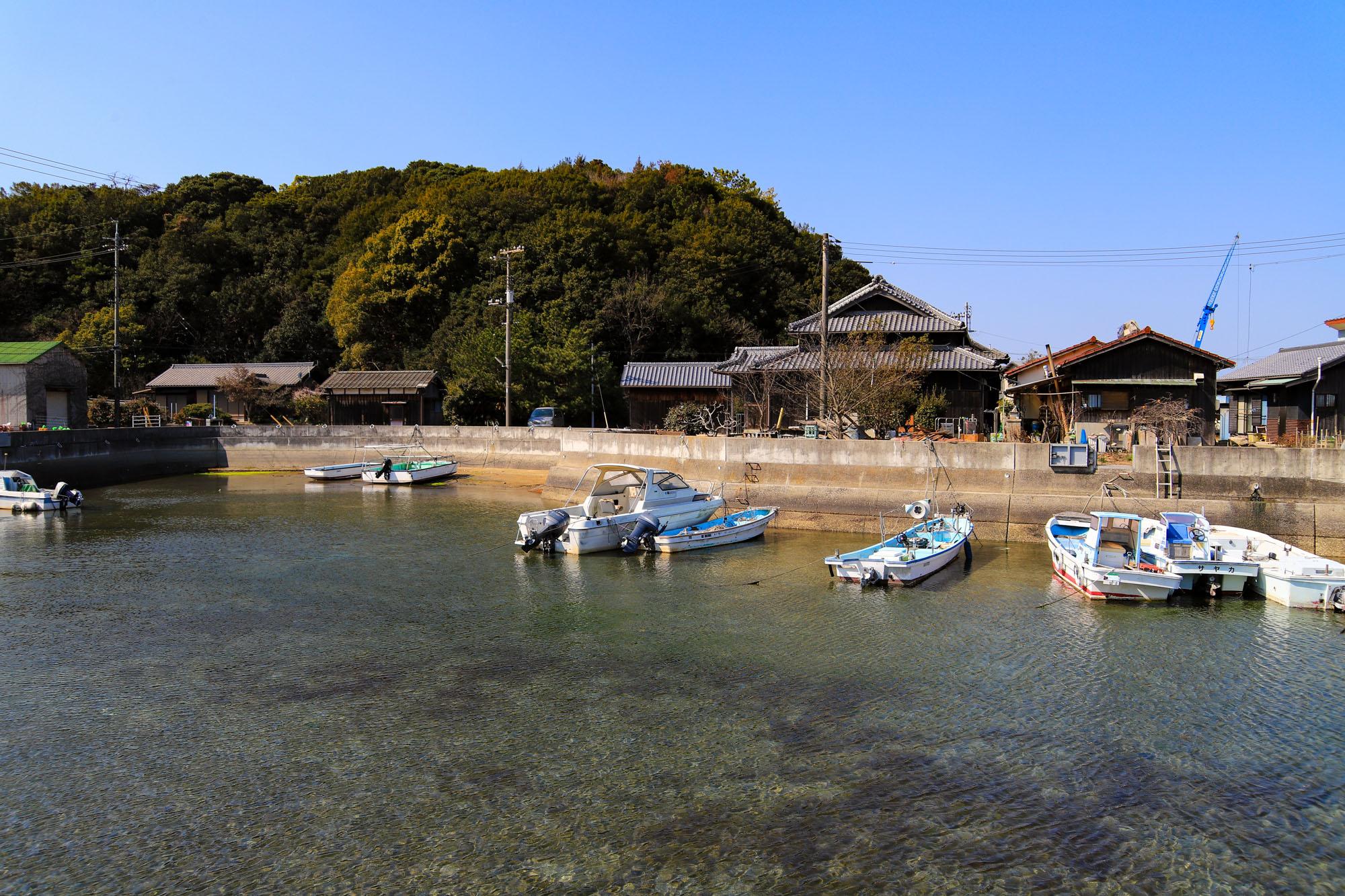 teshima1-30.jpg