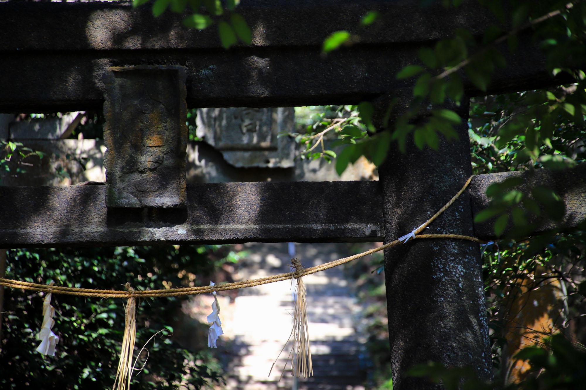 teshima1-32.jpg