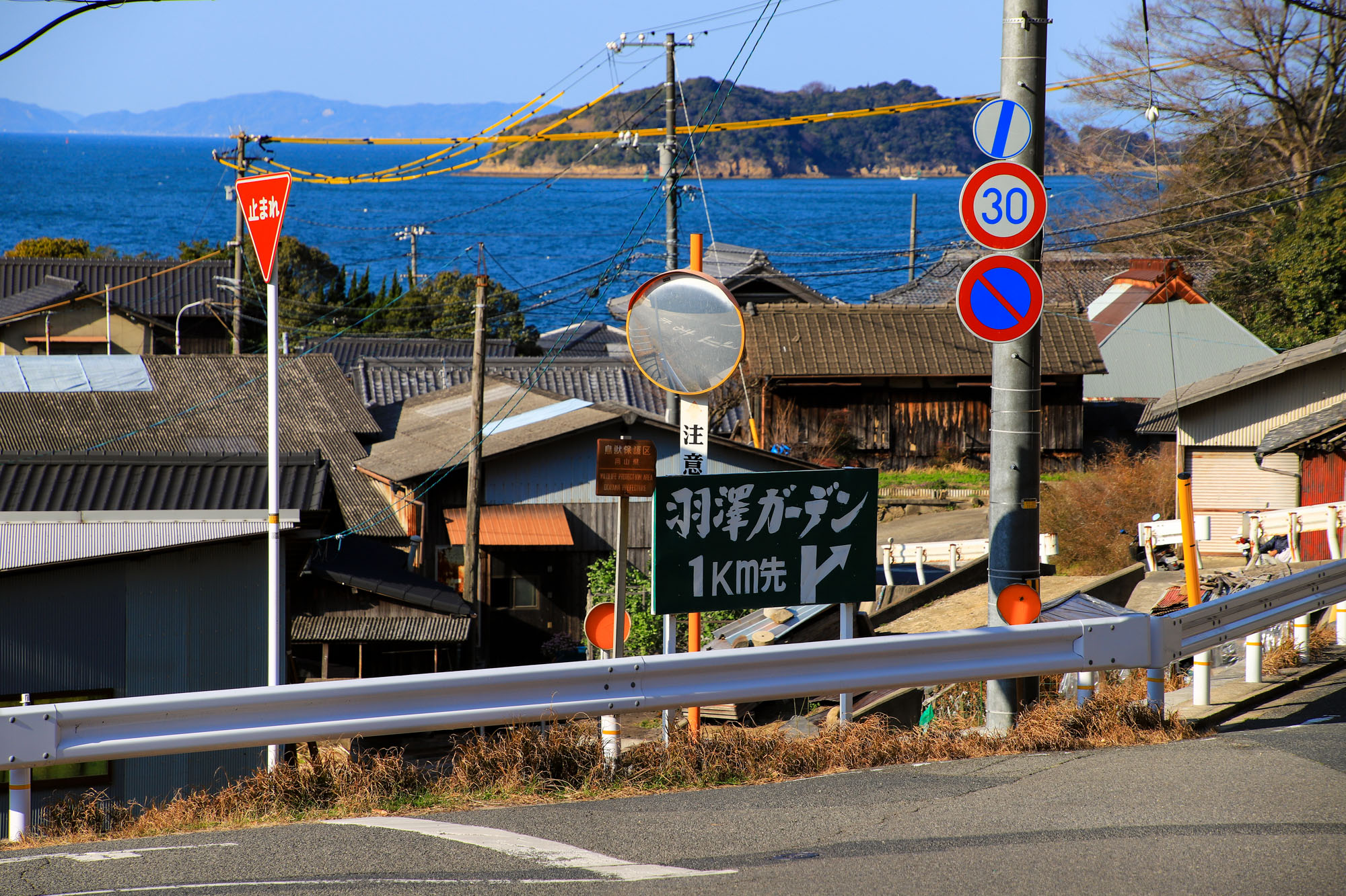teshima1-4.jpg