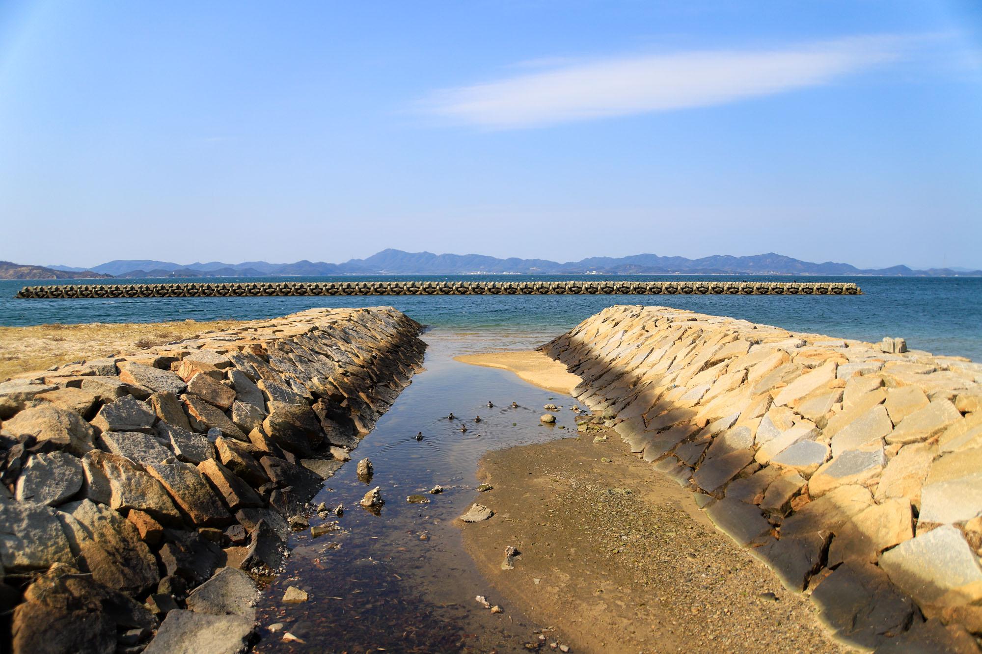 teshima1-41.jpg