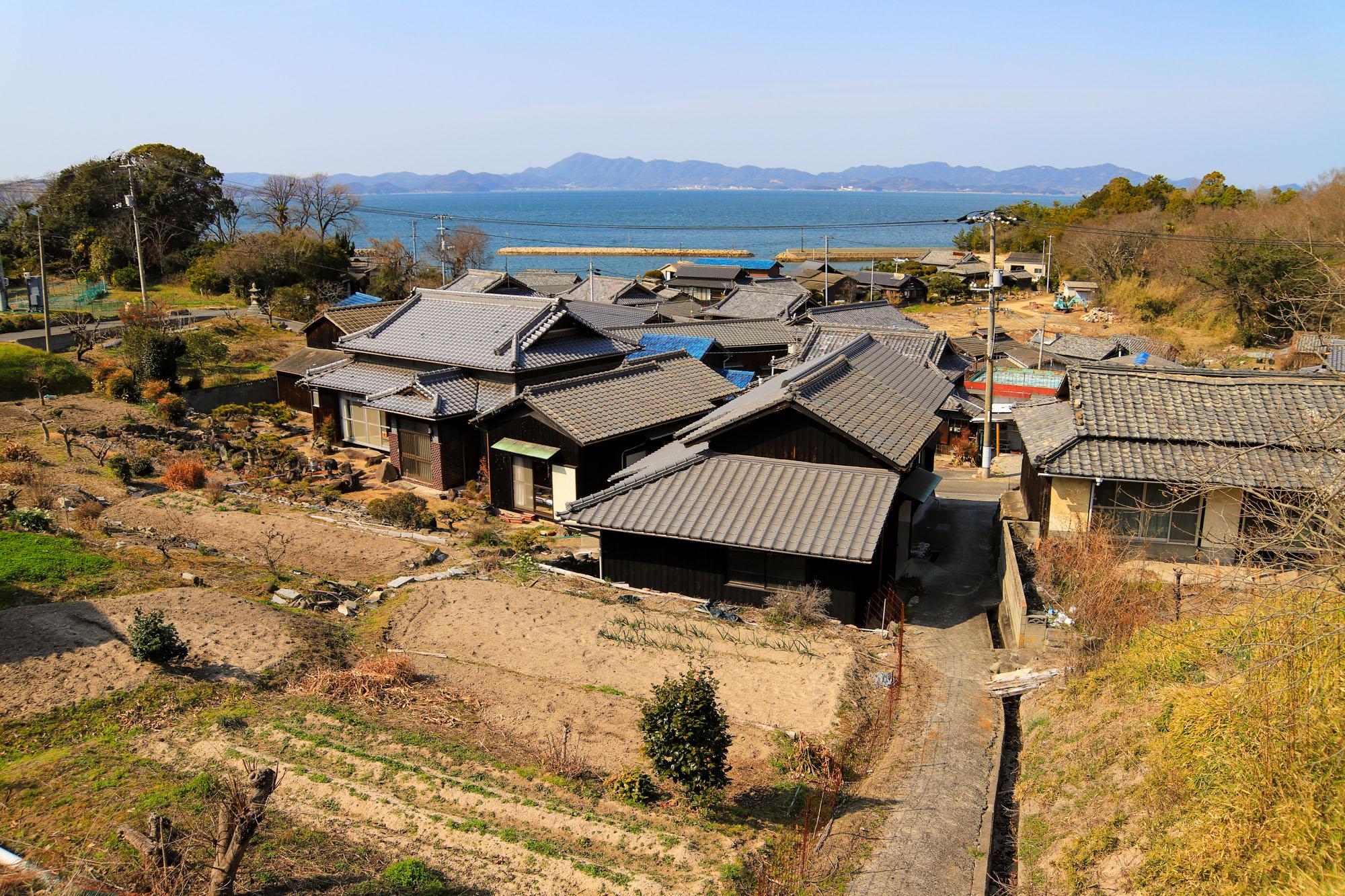 teshima1-42.jpg
