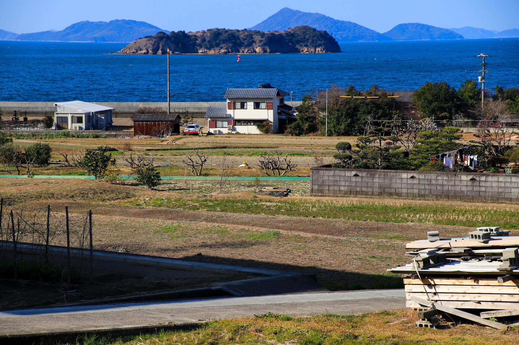 teshima1-5.jpg