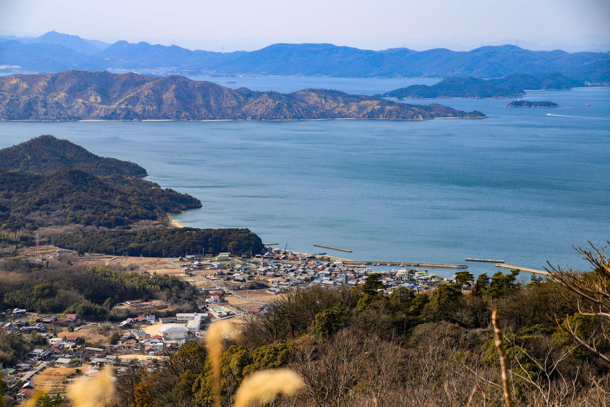 teshima_2-2.jpg