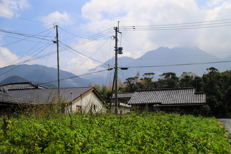 yakushima_tour-40.jpg