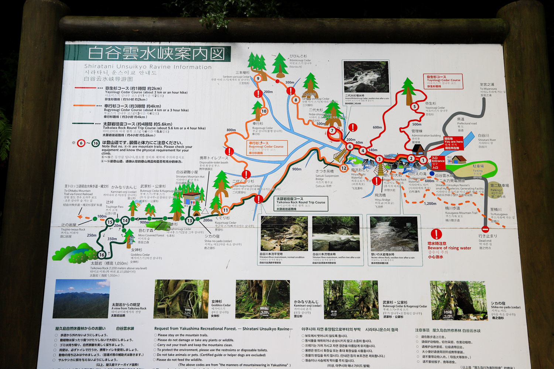 yakushima_tour-8.jpg