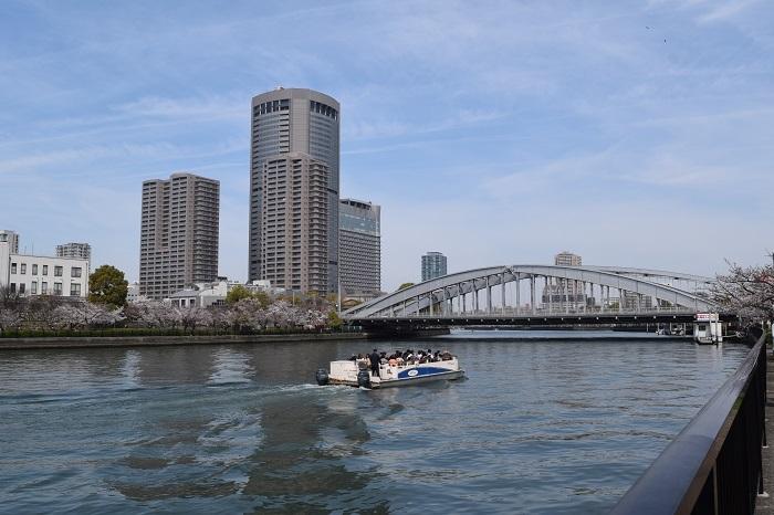 DSC_0417 (2)202103大川さくら
