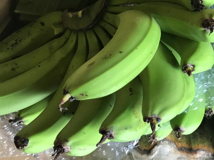 banana20122802.jpg