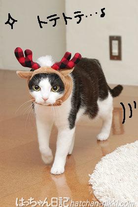 Merry Christmas☆イブを飾るのは