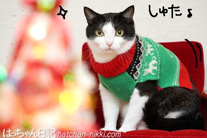Merry christmas。・。+゚☆