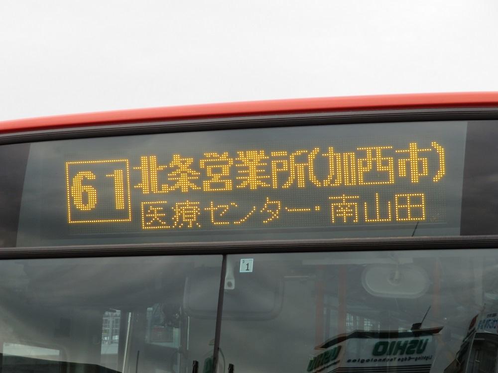 IMG_2290.jpg