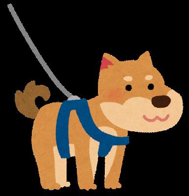 pet_dog_harness.png