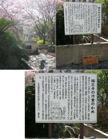2018年3月、静岡県河津町・栖足寺(連結その1)