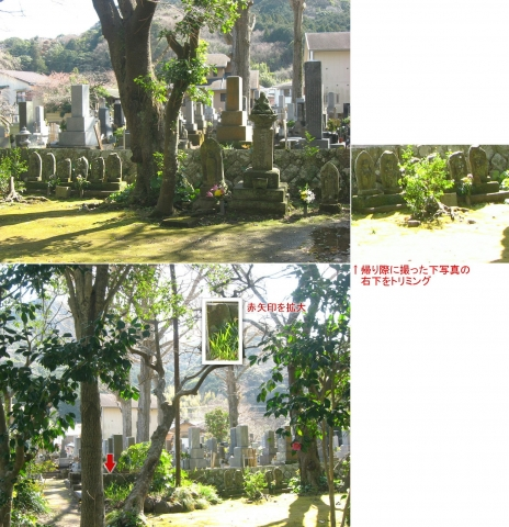 2018年3月、静岡県河津町・栖足寺(連結その3)
