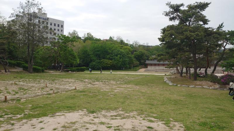 kyonnhi003.jpg