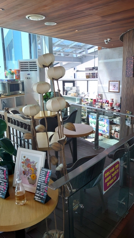 kyonucafe011.jpg