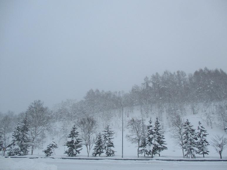 雪210103