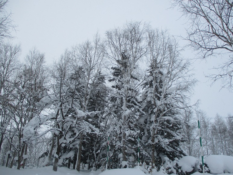 雪210103②