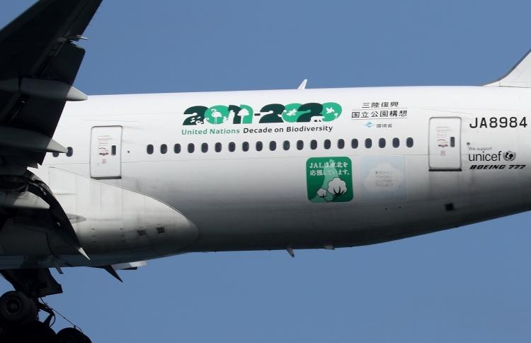 G-29.jpg