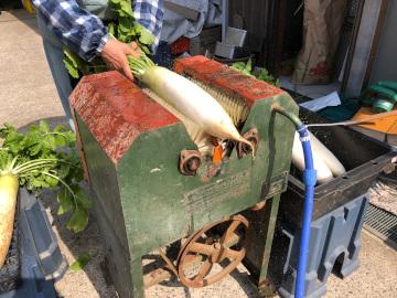 むかしの大根洗い機5
