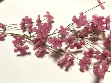 色比べの花餅2