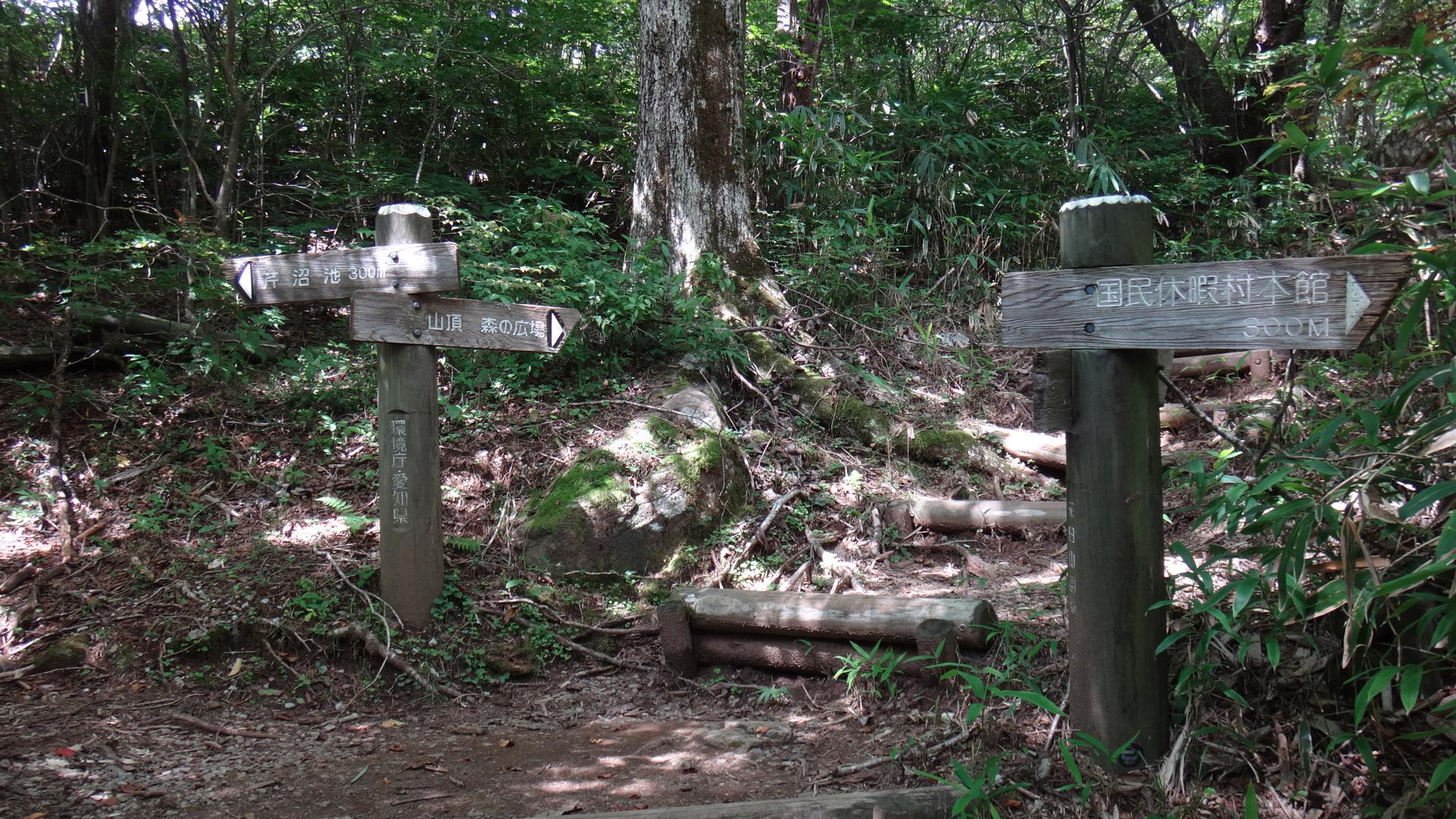 茶臼山へ4