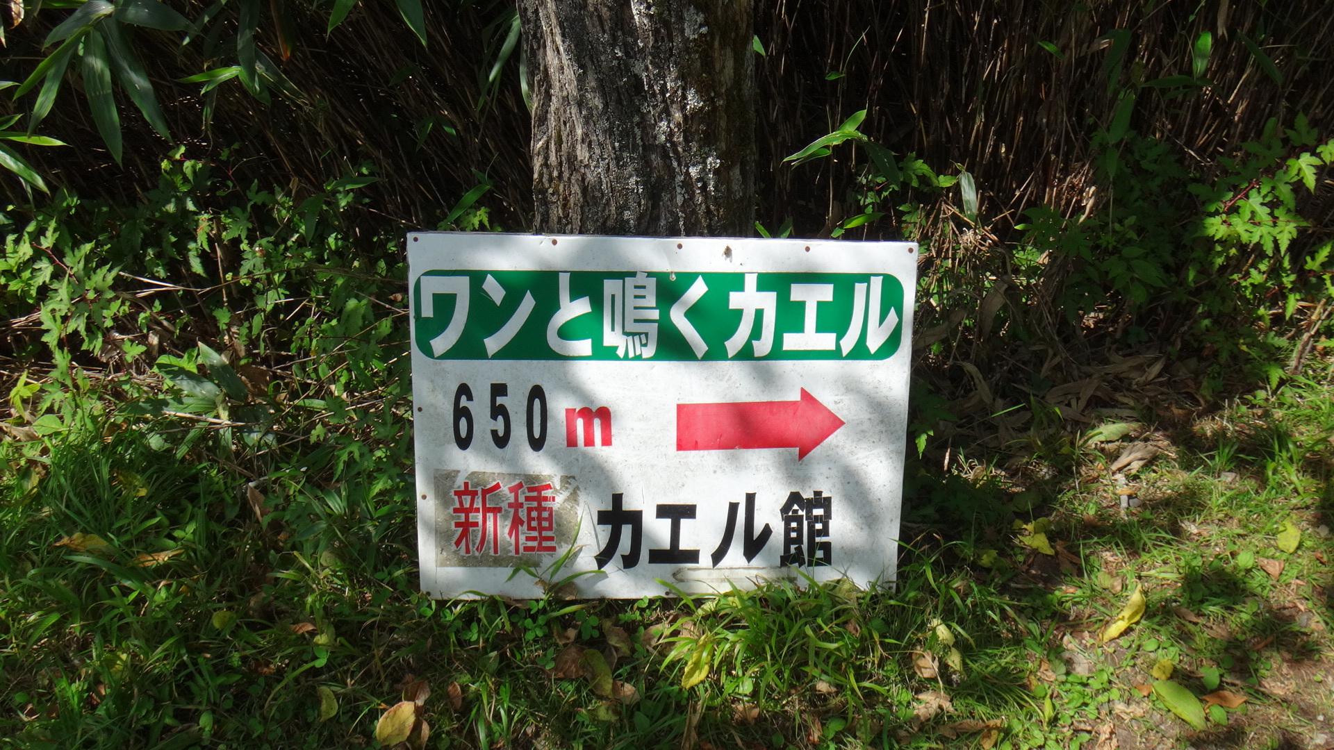 茶臼山へ16