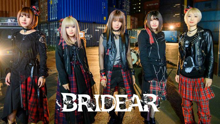 bridear8.jpg