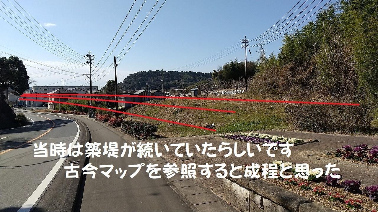 DSC_728(1)