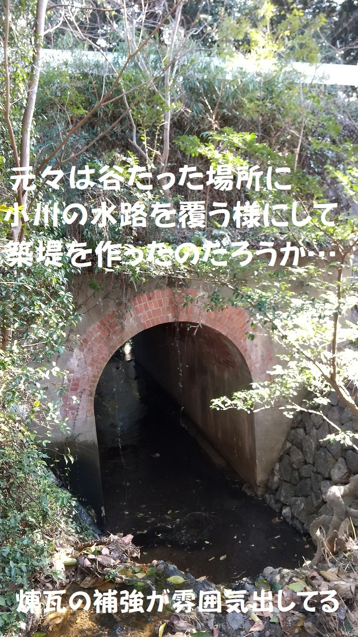 DSC_730.jpg