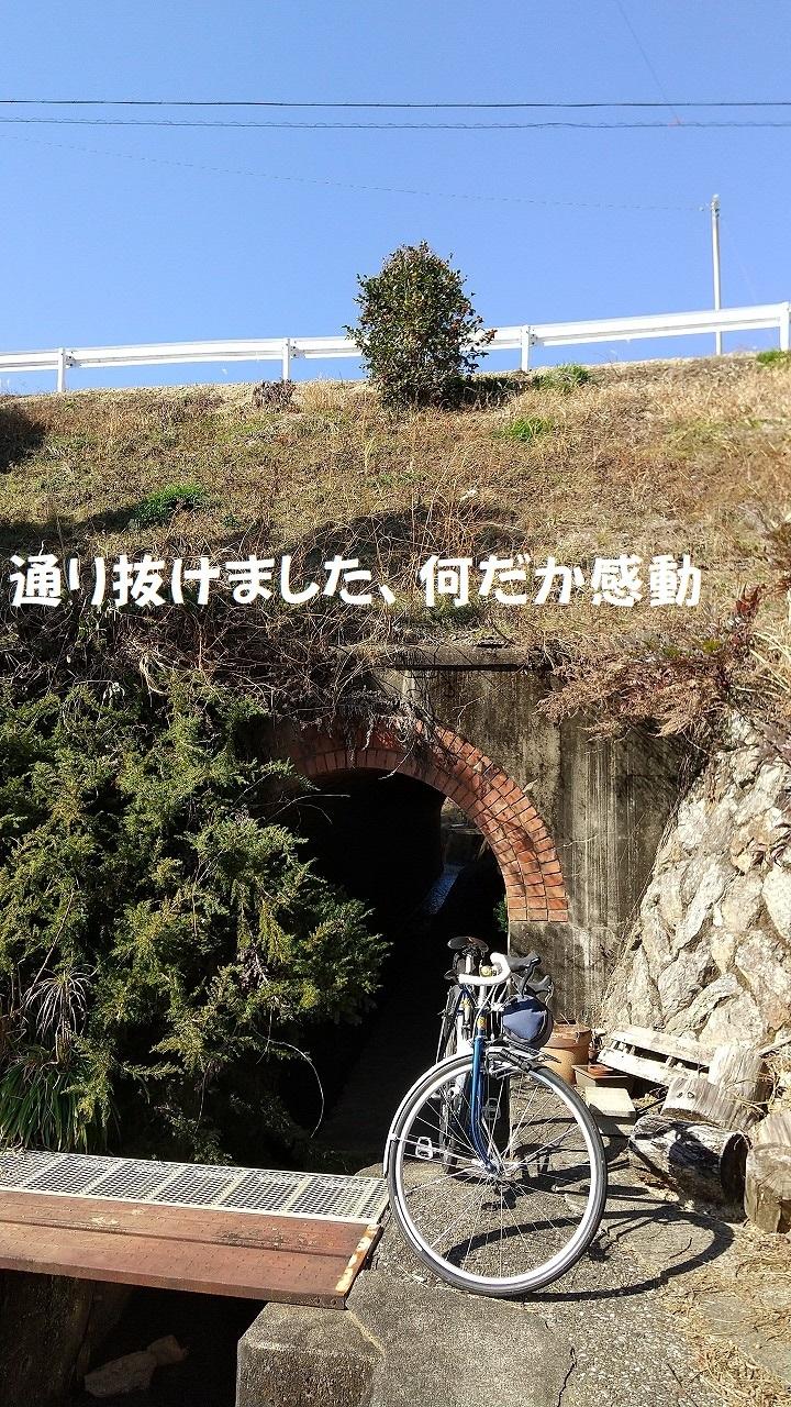 DSC_734.jpg