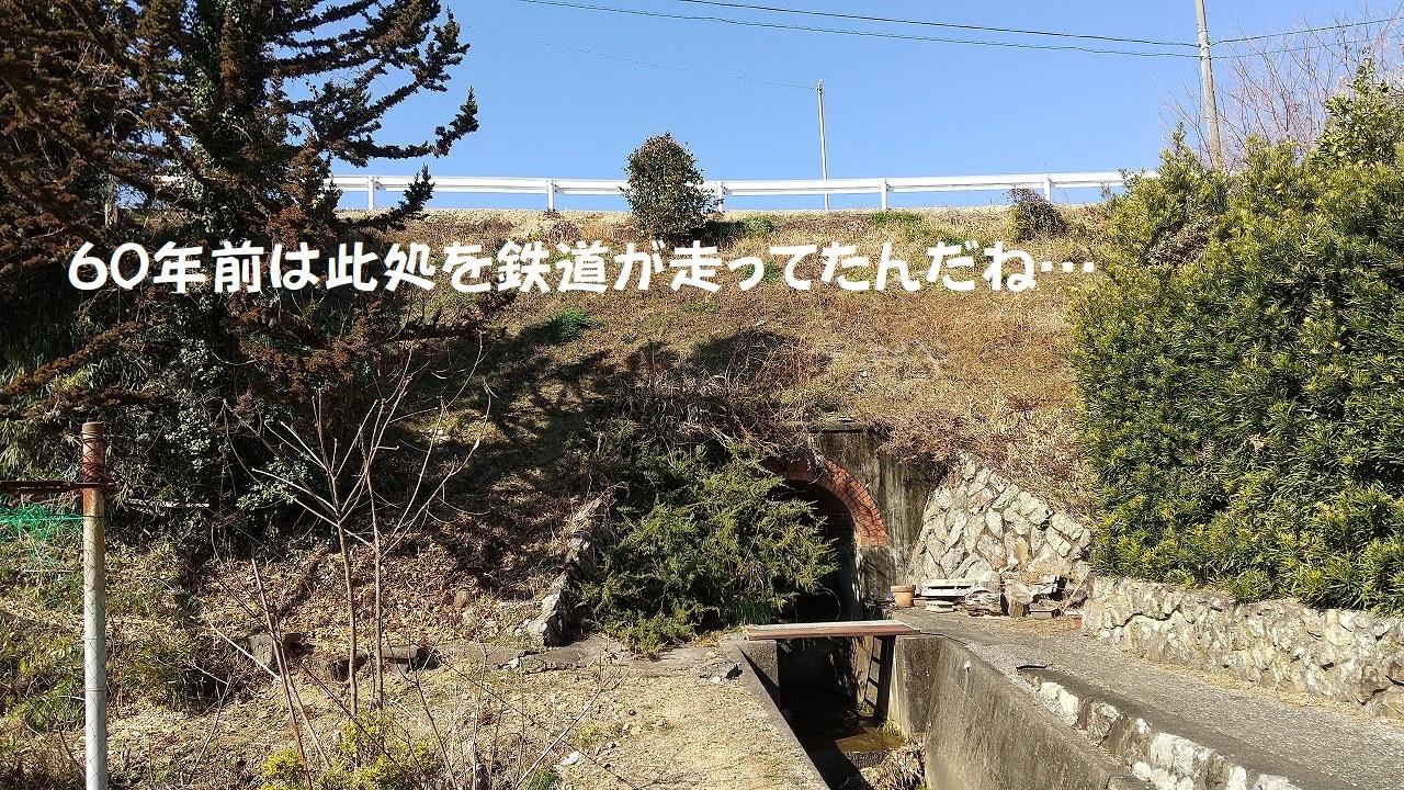DSC_735.jpg