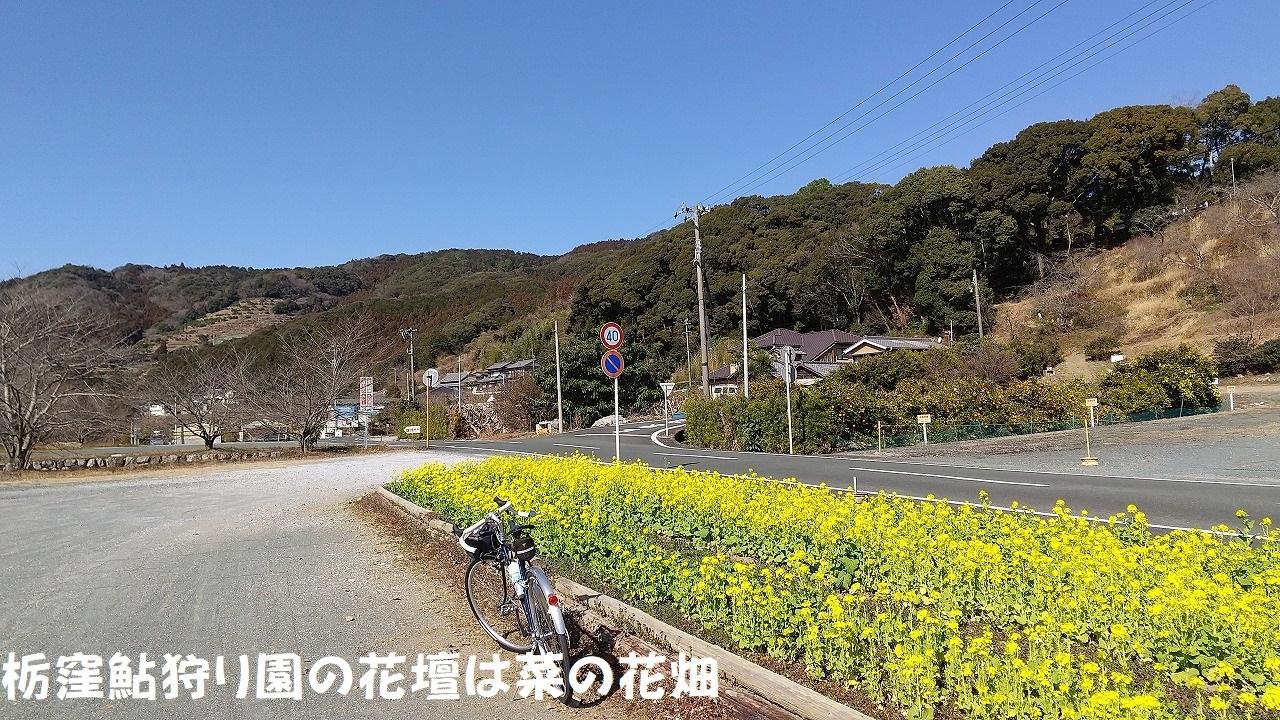 DSC_743.jpg