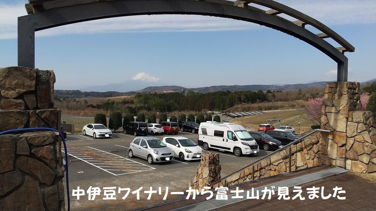 DSC_767.jpg