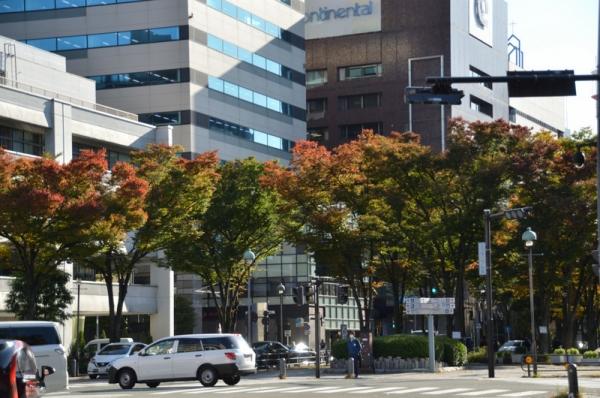 2020-11-4横浜 7