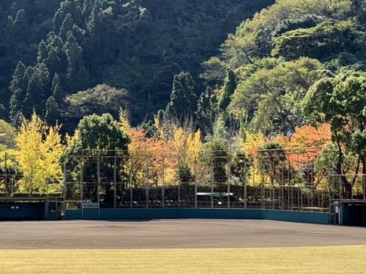 2020-11-10南郷公園 6