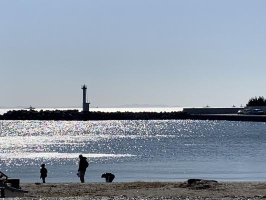 2020-11-14鴨居港 1