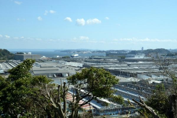 2021-3-24野島山展望台 3