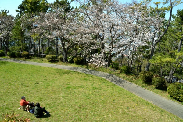 2021-3-24野島山展望台 10