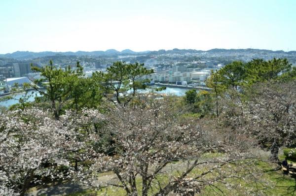 2021-3-24野島山展望台 9